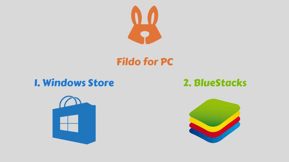 Methods To Install Fildo On Windows PC