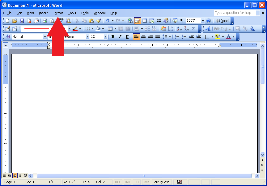 double space word 2003 format paragraph settings