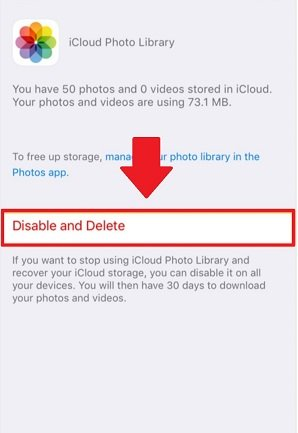 disable icloud photo library and delete photos